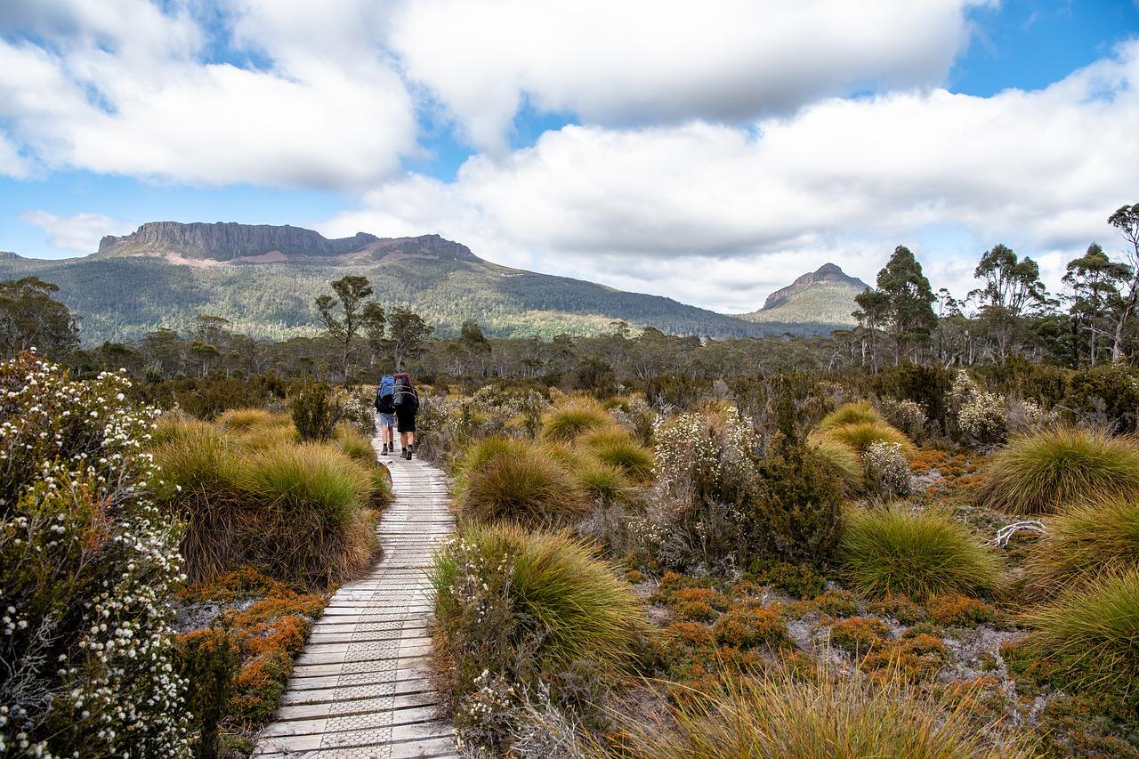 cradle country tasmania