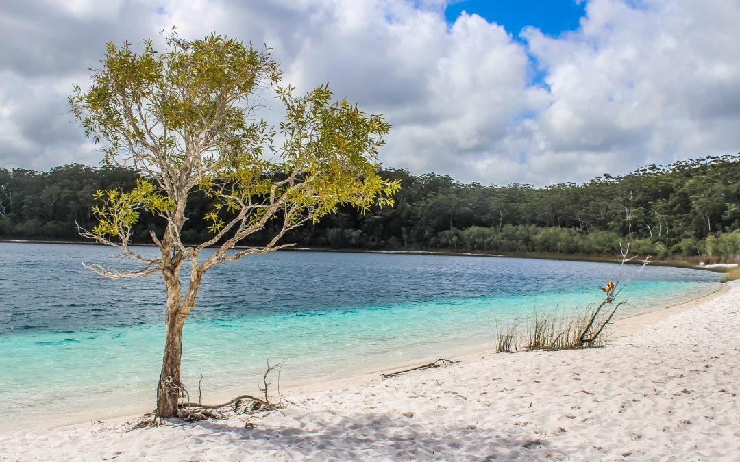 Fraser Island holidays and weekend getaways