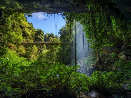 Waterfall Way scenic drive
