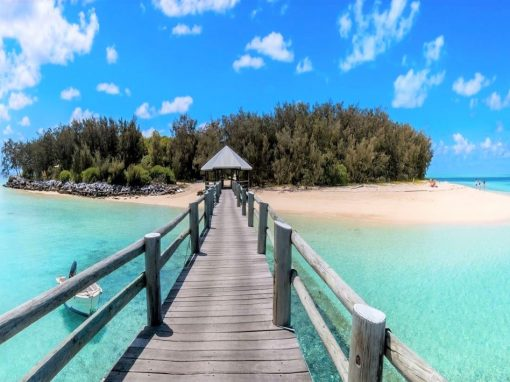 heron island review